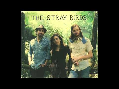 The Stray Birds - Dream In Blue