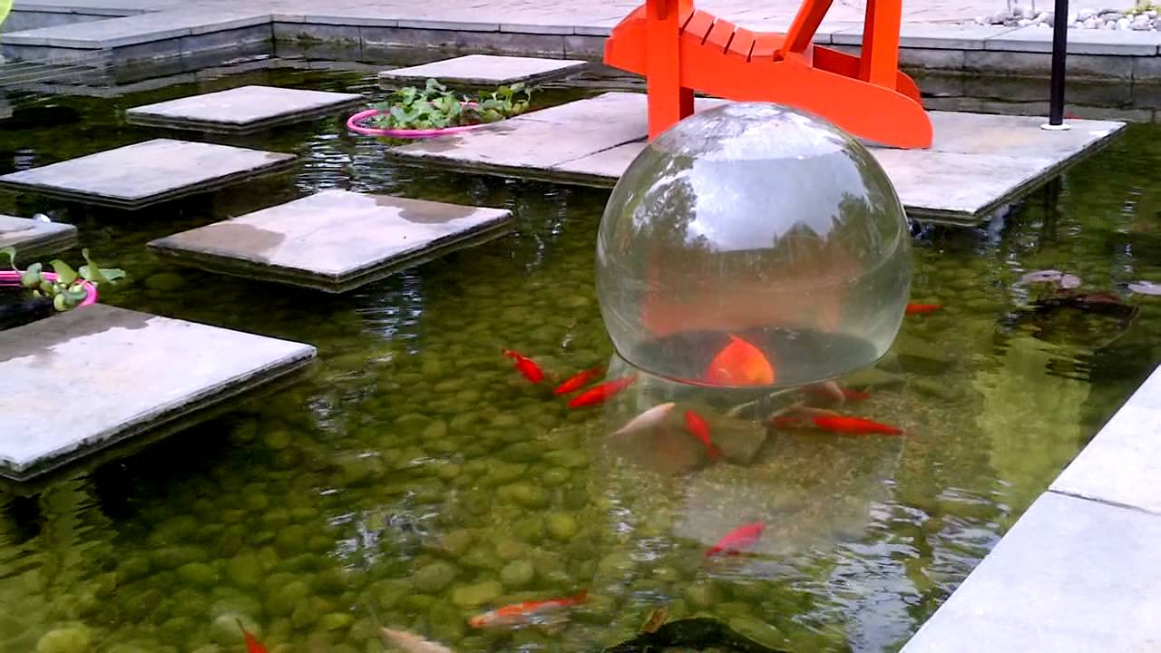 Add a sphere youtube for Koi pond return jets