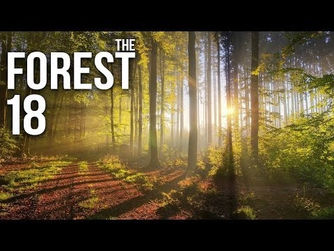 THE FOREST [HD+] #018 - Da haste eben Patch gehabt! ★ Let's Play The Forest