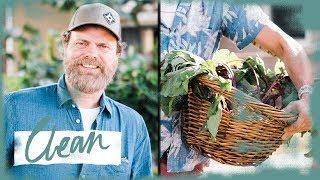 Rainn Wilson Will Happily Eat Your Kale   Food Interrupted