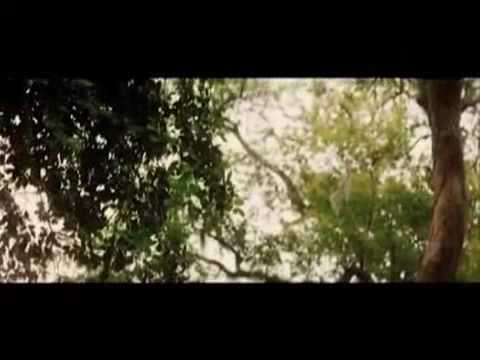 Making of -The Road- - Video.flv