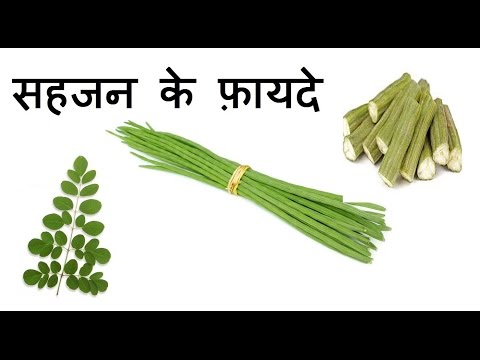 सहजन के फ़ायदे Health Benefits Of Drumsticks For Weight Loss, Skin & Heart 1