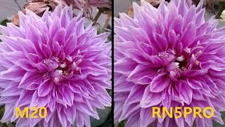 Samsung Galaxy M20 vs Redmi Note 5 Pro Camera Comparison | #M20 #SamsungM20