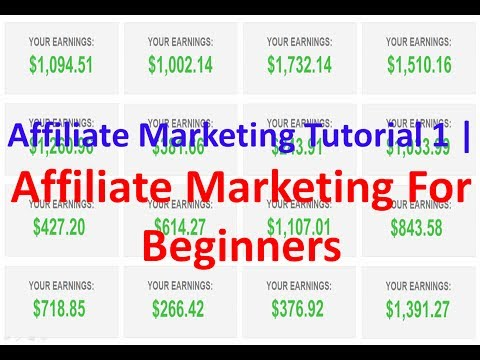 Affiliate Marketing Tutorial 1 | Affiliate Marketing For Beginners