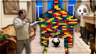 I Built My Dog His Dream House Out Of Legos