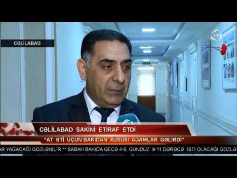 31 03 2017 ATV Cəlilabadda at kəsimi və  at əti tədarükü
