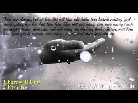 nhạc hòa tấu về mưa buồn và lãng mạn -  Rainy Note