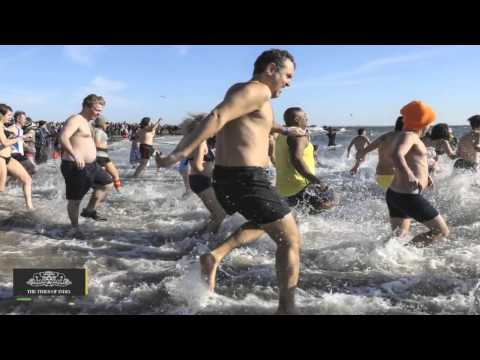 Annual Polar Bear Plunges Splash Winter in the Face - TOI