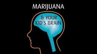 Marijuana & Your Kid's Brain