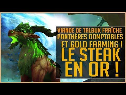 World Of Warcraft - Panthères Domptables et GOLD Farming / Le Steak en OR !