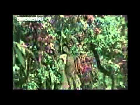 Gapa Hele Bi Sata (1976) - Mun Je Janena Kaha Bata Rahichee Chaheen.flv video