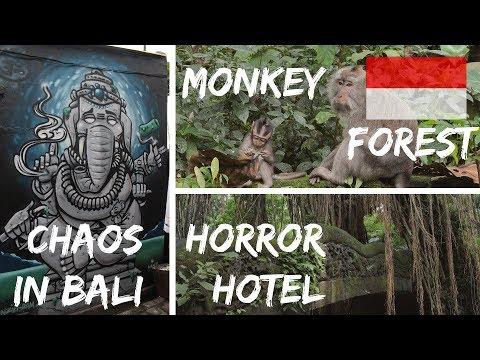 GANZE STADT VOLL MIT AFFEN! | VERKEHRSCHAOS UND SMOG IN BALI | Ubud, Bali | WELTREISE VLOG 027