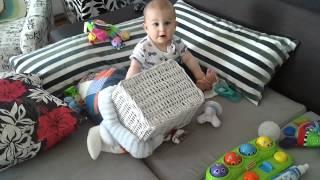 Ahmet Alinin oyuncak kutusu