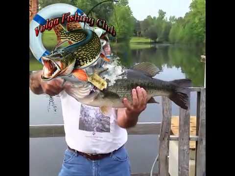 рыбак который словил больше всех рыбы