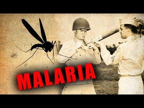 Malaria: Choroba, która w minionym stuleciu zabiła 300 mln ludzi - AleHistoria odc. 64