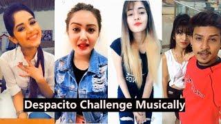 #Despacito Challenge   Tiktok Musically   Jannat Zubair,  Avneet Kaur, Aashika, Awez Darbar, Nagma