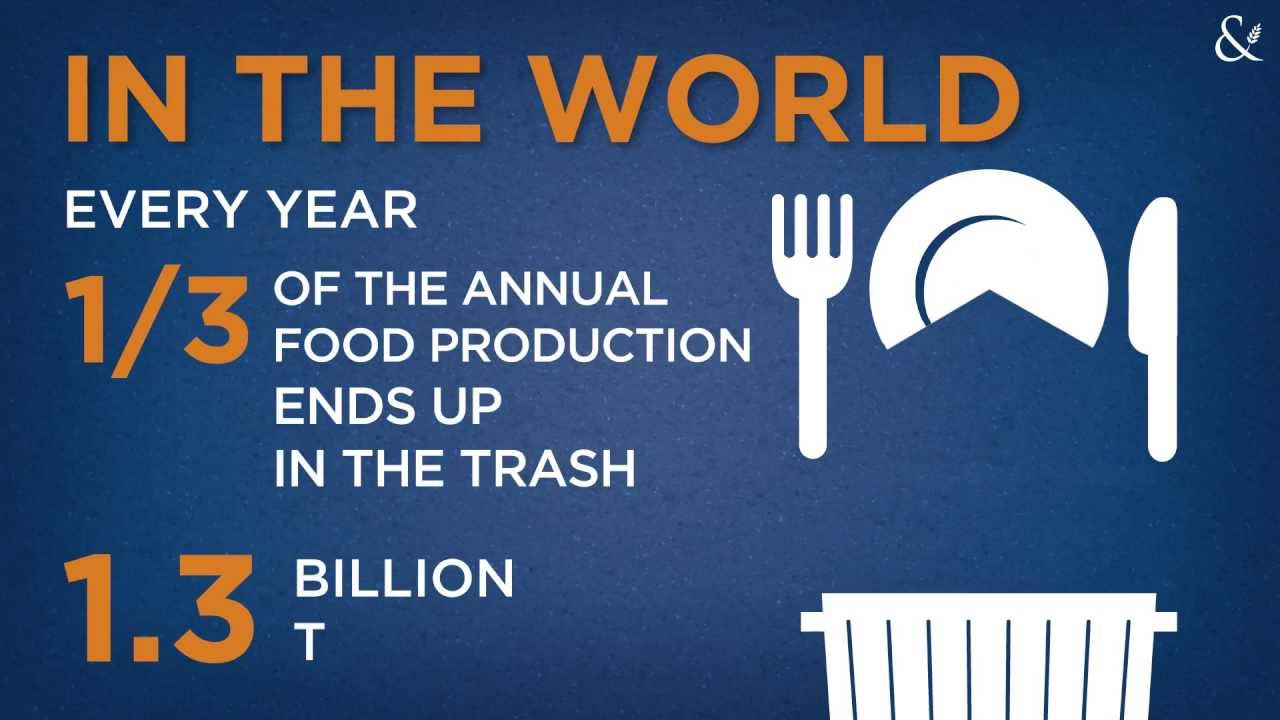 food wastage and the environment Reducing the amount of global food waste could help the environment.