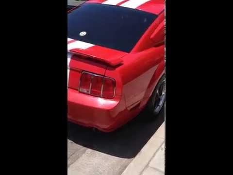 2005 Mustang GT. Comp Cams Mutha Thumprs. SLP loudnouths/no muffler. BBK CAI. BAMA Tuner.