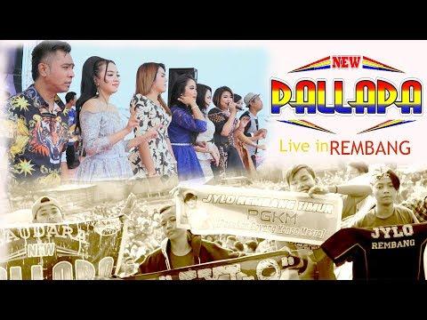 Download Maafkanlah - Sisca & Gerry -  New pallapa live rembang Mp4 baru