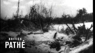 Landing On Palau Island (1944)