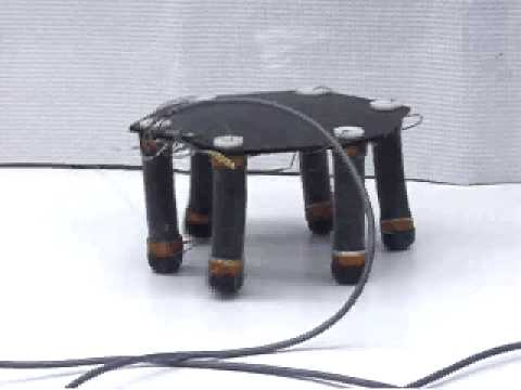 Electroactive Polymer Artificial Muscle (EPAM) Hexapod Robot