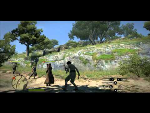 Dragon's Dogma Beginning Tips & Tricks