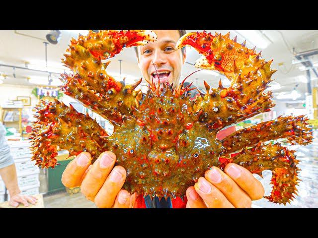 Most UNIQUE Street Food Japan - SPIKY Crab BREAKFAST  Seafood Tour of Sapporo, Hokkaido, Japan!
