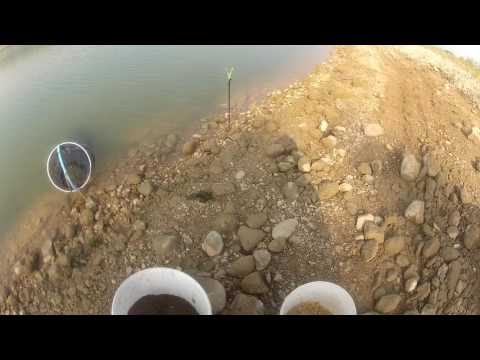 саки рыбалка ноябрь