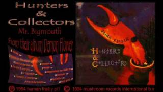 Watch Hunters  Collectors Mr Bigmouth video
