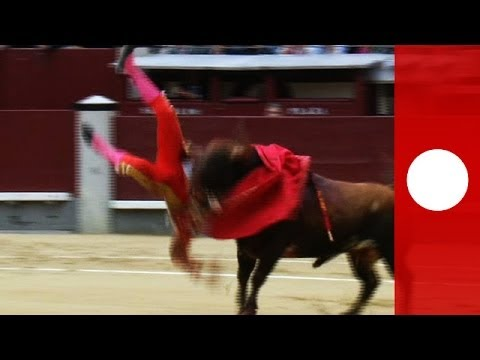 Graphic Footage: Three Matadors Gored In Violent Madrid Bullfight video