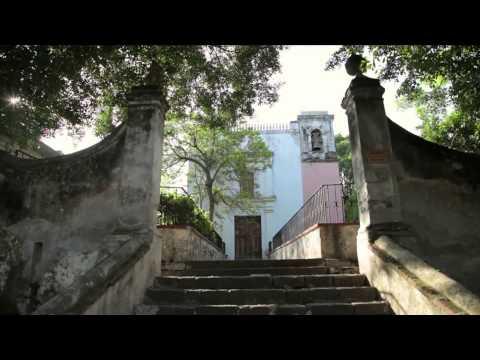 NUESTROS PEQUEÑOS HERMANOS Cuernavaca