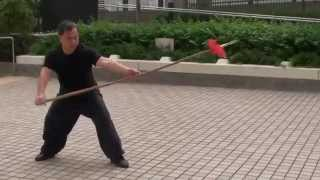Yi Lu Mei Hua Qiang (First Routine Plum Blossom Spear)