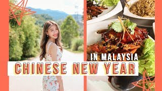 Spend my Chinese New Year with me! 🐷🎉