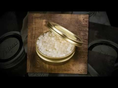 Snail Caviar Taste Snail Caviar