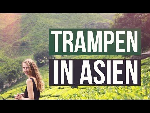 TRAMPEN durch ASIEN | Vertrauen ins Universum | Teeplantagen, Cameron Highland, Malaysia, Weltreise