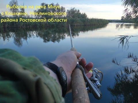 ловить рыбу неклиновский район