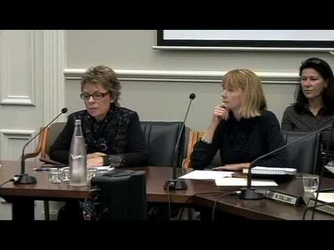 Dunedin City Council - Finance, Strategy and Development Committee - April 24 2013