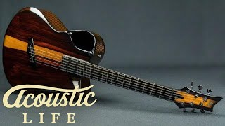 Emerald X20 Woody Cocobolo Guitar Review
