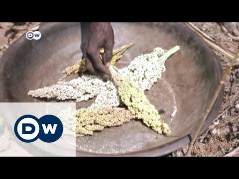 Civil War and drought threaten South Sudan | DW News