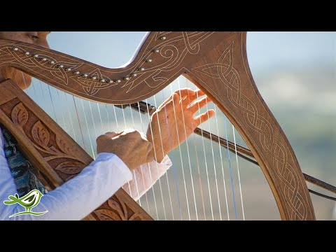 Relaxing Harp Music: Sleep Music, Meditation Music, Spa Music, Study Music, Instrumental Music ★49