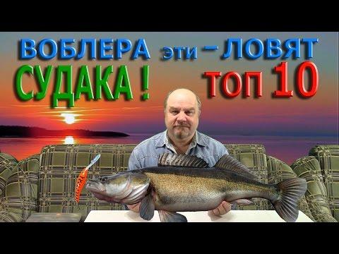 ВОБЛЕРА эти - ЛОВЯТ СУДАКА ! ТОП - 10