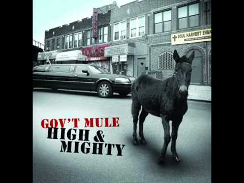Govt Mule - Brand New Angel