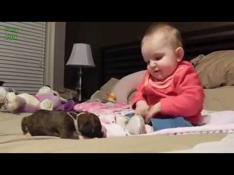 Puppies and Babies Playing Together Compilation 2015 NEW HD