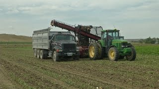 Sugarbeet Harvest a Sweet Deal for Montana and Wyoming Farmers