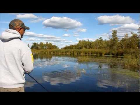 Topwater Frog Fishing For Largemouth Bass.wmv