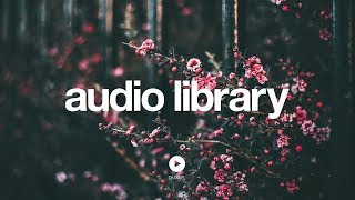 [No Copyright Music] expression - Pold