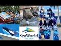 SeaWorld Orlando Florida 2021 Vlog   Everything you need to know !