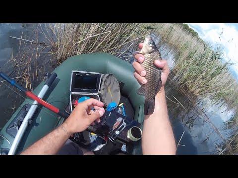 рыбалка на карася на удочке камыш видео