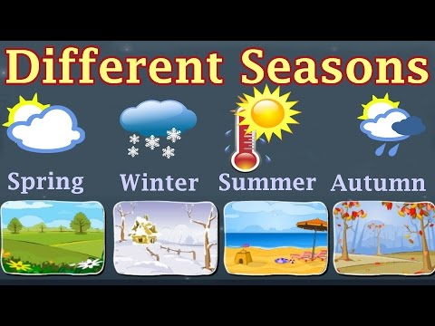 Weather, Different Seasons, Learn About Autumn, Winter, Spring, Summer, Preschool Activity