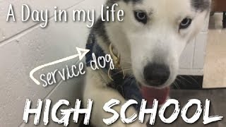 A Day In My Life // High School with a Service Dog